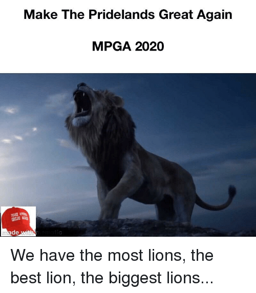 Best Antivirus Reddit 2020 Make the Pridelands Great Again MPGA 2020 MAKE De | Reddit Meme on