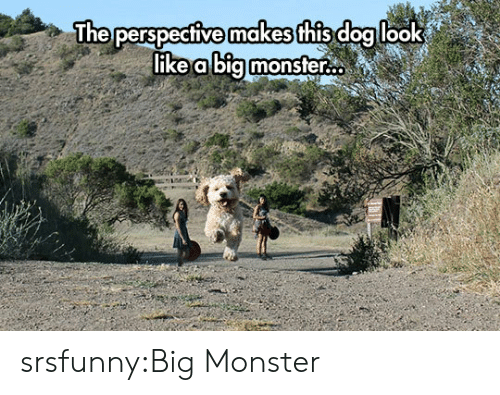 Monster, Tumblr, and Blog: makes  The perspective  this doallook  ike a bia monsfer.. srsfunny:Big Monster