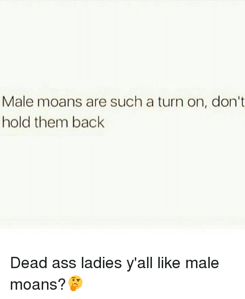 Ass, Memes, and Back: Male moans are such a turn on, don't  hold them back Dead ass ladies y'all like male moans?🤔
