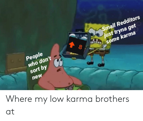 Karma, Brothers, and Who: mall Redditors  People  6  just tryna get  some karma  who don't  sort by  new Where my low karma brothers at