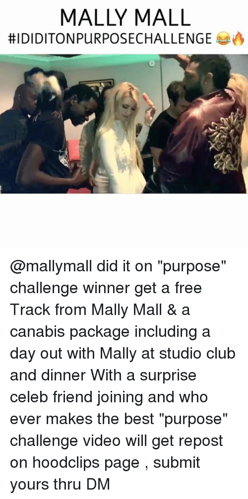 """Club, Funny, and Mally Mall: MALLY MALL  HIDIDITONPURPOSECHALLENGE A @mallymall did it on """"purpose"""" challenge winner get a free Track from Mally Mall & a canabis package including a day out with Mally at studio club and dinner With a surprise celeb friend joining and who ever makes the best """"purpose"""" challenge video will get repost on hoodclips page , submit yours thru DM"""
