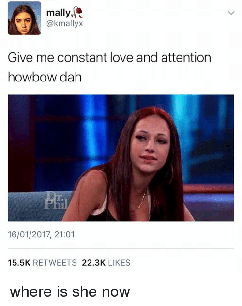 Memes, 🤖, and Dah: mally,  mallVX  Give me constant love and attention  howbow dah  16/01/2017, 21:01  15.5K  RETWEETS  22.3K  LIKES where is she now