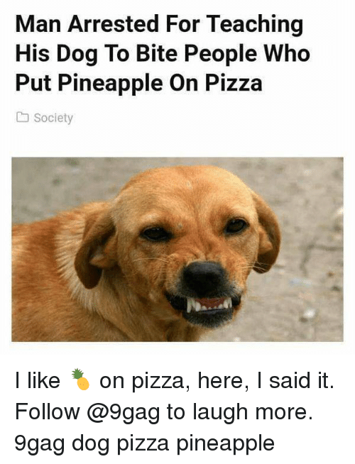 9gag, Memes, and Pizza: Man Arrested For Teaching  His Dog To Bite People Who  Put Pineapple On Pizza  Society I like 🍍 on pizza, here, I said it. Follow @9gag to laugh more. 9gag dog pizza pineapple
