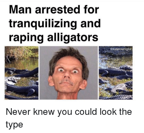 Never, Man, and You: Man arrested for  tranquilizing and  raping alligators  @katiecerniglia Never knew you could look the type