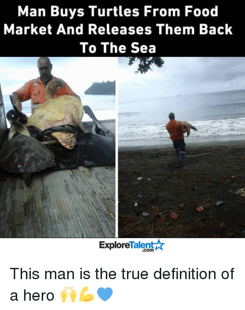 Memes, Turtle, and 🤖: Man Buys Turtles From Food  Market And Releases Them Back  To The Sea  Talent  Explore This man is the true definition of a hero 🙌💪💙