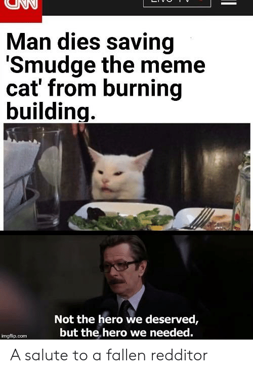 Man Dies Saving Smudge The Meme Cat From Burning Building