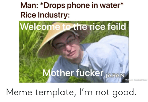 Meme, Phone, and Reddit: Man: *Drops phone in water*  Rice Industry:  Welcome tothe rice feild  ther fucker APAN  Ma Meme template, I'm not good.