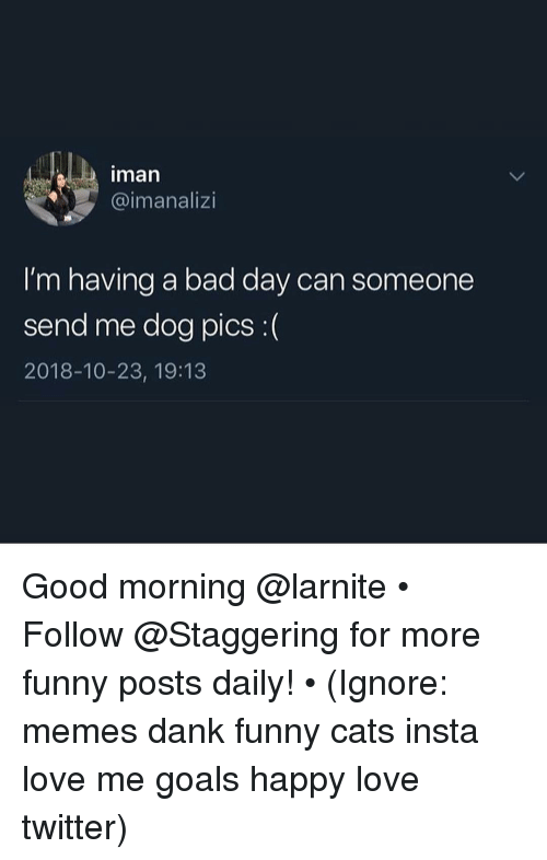 Bad, Bad Day, and Cats: man  @imanalizi  I'm having a bad day can someone  send me dog pics :(  2018-10-23, 19:13 Good morning @larnite • ➫➫➫ Follow @Staggering for more funny posts daily! • (Ignore: memes dank funny cats insta love me goals happy love twitter)
