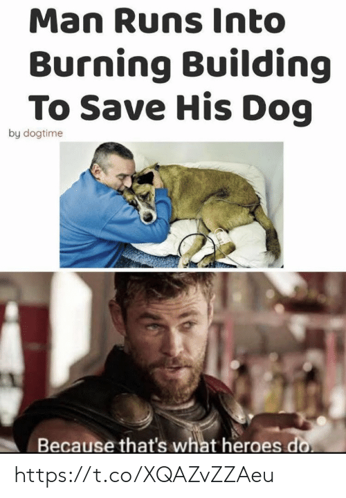 Memes, Heroes, and 🤖: Man Runs Into  Burning Building  To Save His Dog  by dogtime  Because that's what heroes do https://t.co/XQAZvZZAeu