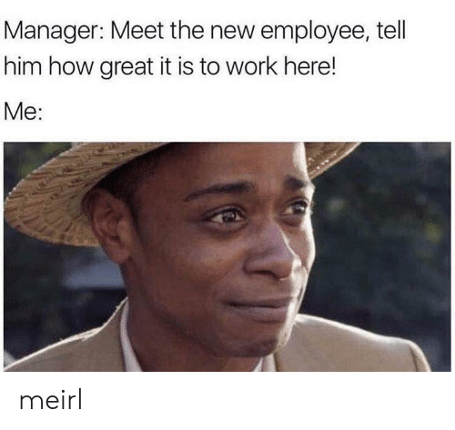Work, MeIRL, and How: Manager: Meet the new employee, tell  him how great it is to work here!  Me: meirl