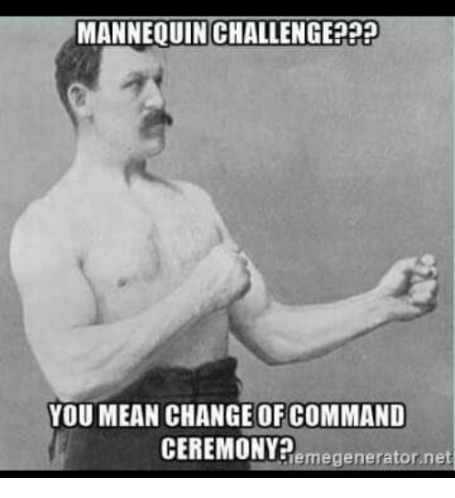 Military, Mannequin, and Net: MANNEQUIN CHALLENGE PPP  YOU MEAN CHANGE OF COMMAND  CEREMONY?  generator net  leme