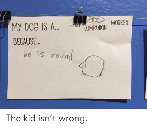"""Dog, Kid, and Because: Manor WORKER  RCLE  MY DOG IS A"""",  BECAUSE..  H  he is roUn The kid isn't wrong."""