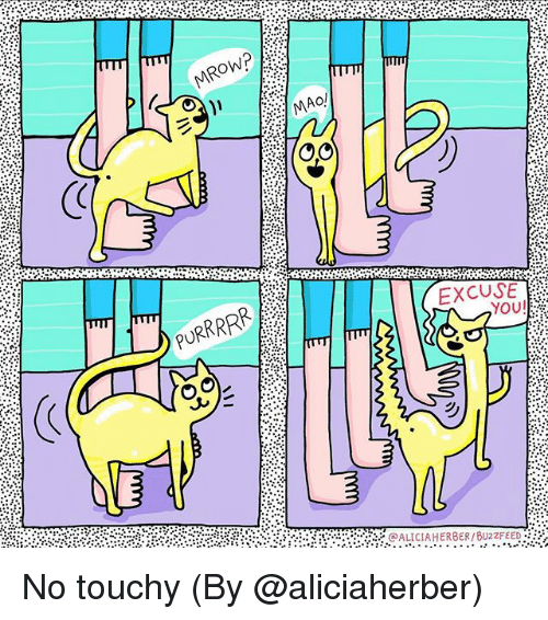 Memes, Mao, and 🤖: MAO!  PURRRR  EXCUSE  YOU No touchy (By @aliciaherber)
