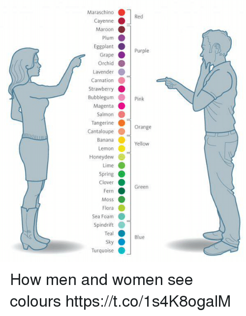 Blue, Orange, and Pink: Maraschino  rapePurple  Strawberry  Pink  Orange  Yellow  Honeydew  Green  Blue  Turquoise How men and women see colours https://t.co/1s4K8ogalM