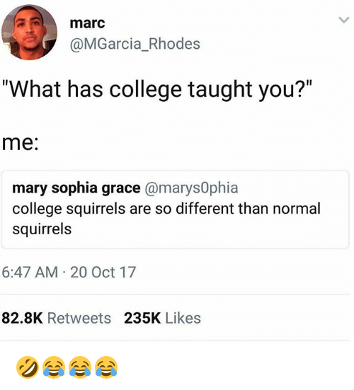 "College, Girl Memes, and Grace: marc  @MGarcia_Rhodes  ""What has college taught you?""  me:  mary sophia grace @marys0phia  college squirrels are so different than normal  squirrels  6:47 AM 20 Oct 17  82.8K Retweets 235K Likes 🤣😂😂😂"