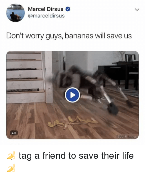Gif, Life, and Relatable: Marcel Dirsus  @marceldirsus  Don't worry guys, bananas will save us  GIF  4GIFS.con 🍌 tag a friend to save their life 🍌