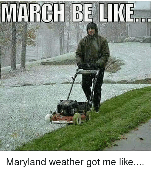 Memes, 🤖, and March: MARCH BE LIKE Maryland weather got me like....