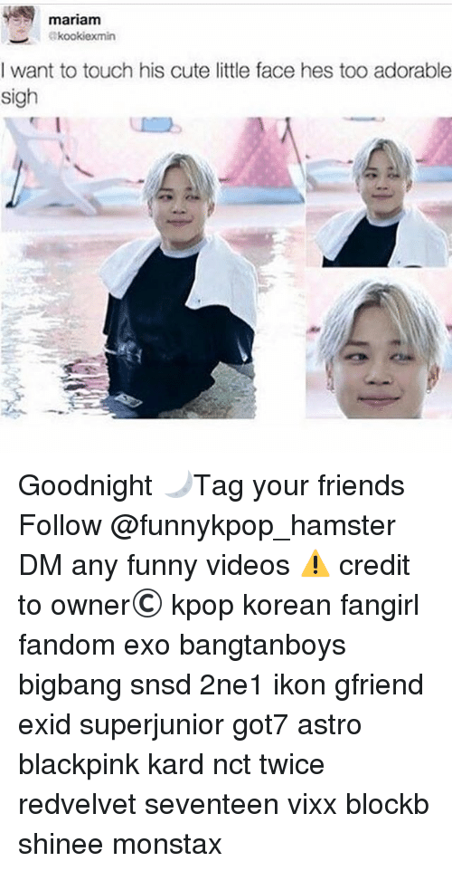 Cute, Friends, and Funny: mariam  I want to touch his cute little face hes too adorable  sigh  SI  To Goodnight 🌙》Tag your friends 》》 Follow @funnykpop_hamster 》》》DM any funny videos ⚠ credit to owner© kpop korean fangirl fandom exo bangtanboys bigbang snsd 2ne1 ikon gfriend exid superjunior got7 astro blackpink kard nct twice redvelvet seventeen vixx blockb shinee monstax