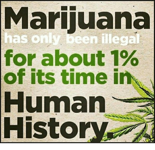 Memes, History, and Marijuana: Marijuana  has only been illega  for about 1%  of its time in  Human  History