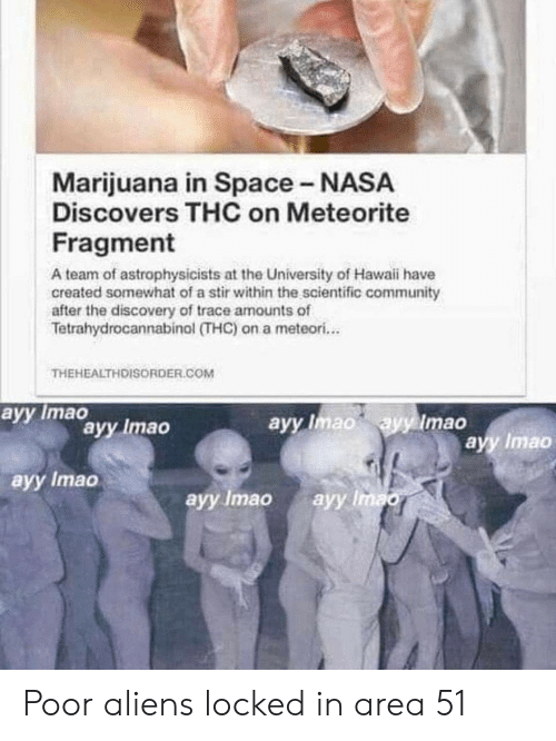 Community, Nasa, and Reddit: Marijuana in Space - NASA  Discovers THC on Meteorite  Fragment  A team of astrophysicists at the University of Hawaii have  created somewhat of a stir within the scientific community  after the discovery of trace amounts of  Tetrahydrocannabinol (THC) on a meteori...  THEHEALTHDISORDER.COM  ayy Imaavy Imao  ayy Imao ayy Imao  ayy Imao  ayy Imao  ayy Imao  ауy Imao Poor aliens locked in area 51