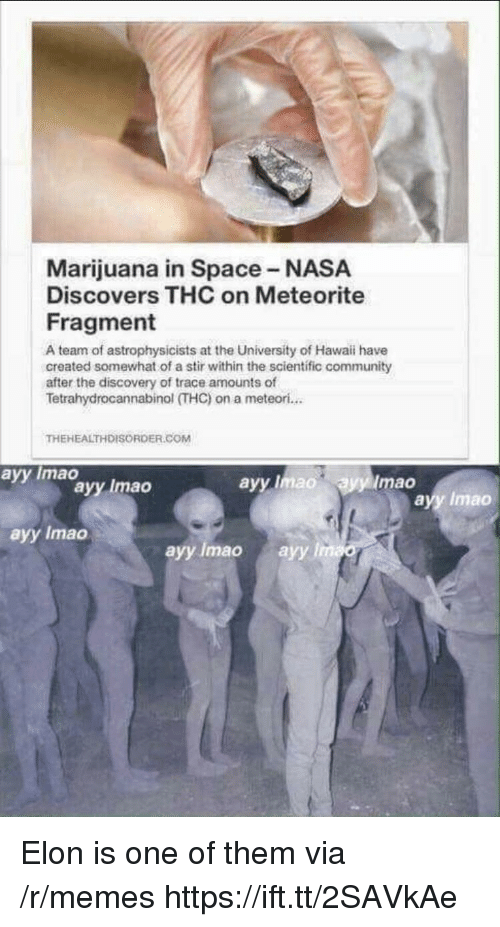Community, Memes, and Nasa: Marijuana in Space NASA  Discovers THC on Meteorite  Fragment  A team of astrophysicists at the University of Hawaii have  created somewhat of a stir within the scientific community  after the discovery of trace amounts of  Tetrahydrocannabinol (THC)on a meteori...  THEHEALTHDISORDER.COM  avy Imao  avy lmad  Imao  ayy Imao  ayy Imao  ayy Imao  ayy Imao ayy l Elon is one of them via /r/memes https://ift.tt/2SAVkAe