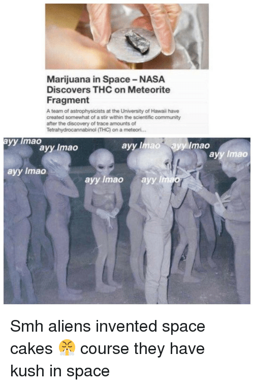 Ayy LMAO, Memes, and Nasa: Marijuana in Space-NASA  Discovers THC on Meteorite  Fragment  A team of astrophysicists at the University of Hawaii have  created somewhat of a stir within the scientific community  after the discovery of trace amounts of  Tetrahydrocannabinol ITHC) on a meteori...  yy lmao  ayy mao ayylimao  ayy Imao  ayy lmao  ayy lmao  ayy lmao  ayy lmao Smh aliens invented space cakes 😤 course they have kush in space