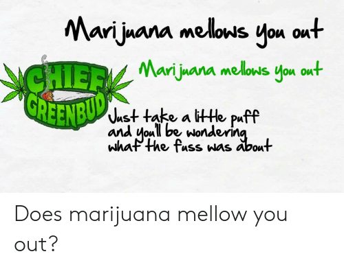 Memes, Marijuana, and 🤖: Marijuana melows you out  Ari luana mellows vou ou  REENBU  ^ust take a ittHe puff  and oull be wonderin  whaP the fuss was About Does marijuana mellow you out?
