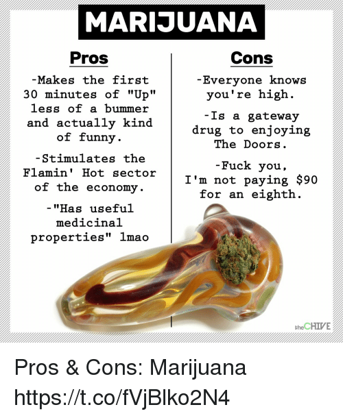 marijuanas pros and cons Those us states that have legalised the sale of marijuana issue licenses to approved retailers and sets taxes on cannabis the pros and cons of legalising.