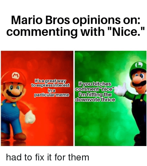 Mario Bros Opinions On Commenting With Nice It Sagreatway