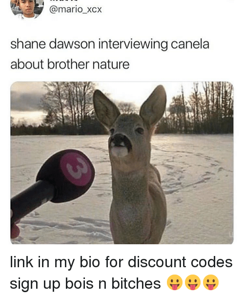 Memes, Mario, and Link: @mario_xcx  shane dawson interviewing canela  about brother nature link in my bio for discount codes sign up bois n bitches 😛😛😛