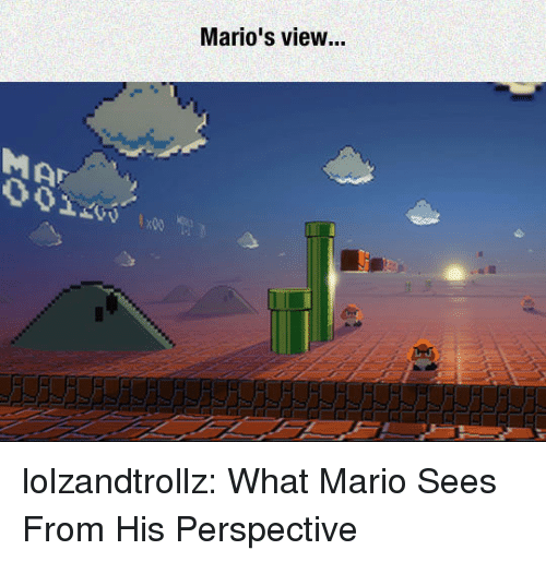 Tumblr, Mario, and Blog: Mario's view... lolzandtrollz:  What Mario Sees From His Perspective