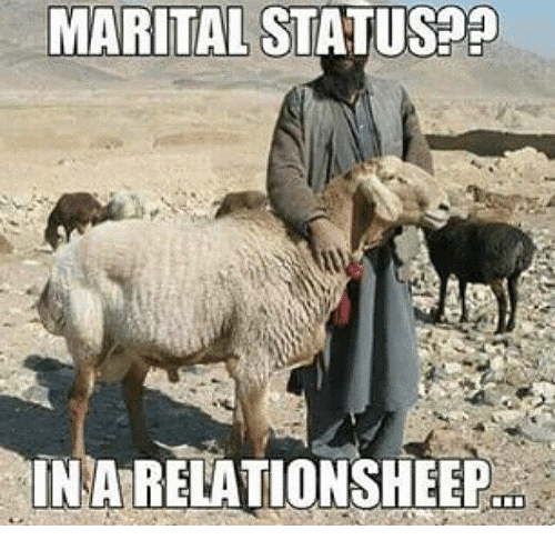 Military, Status, and Relationsheep: MARITAL STATUS  IN A RELATIONSHEEP