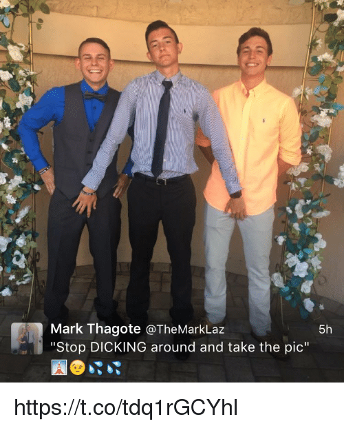"""Memes, 🤖, and Dicking Around: Mark Thagote a The Mark Laz  5h  """"Stop DICKING around and take the pic"""" https://t.co/tdq1rGCYhl"""