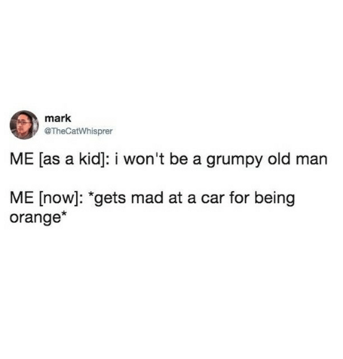 "Cars, Memes, and Old Man: mark  @TheCatWhisprer  ME [as a kid]: i won't be a grumpy old man  ME [now]: ""gets mad at a car for being  orange*"