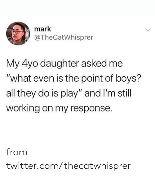 "Dank, Twitter, and Boys: mark  @TheCatWhisprer  My 4yo daughter asked me  ""what even is the point of boys?  all they do is play"" and I'm still  working on my response. from twitter.com/thecatwhisprer"