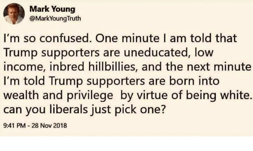 Confused, Memes, and Trump: Mark Young  @MarkYoungTruth  I'm so confused. One minute I am told that  Trump supporters are uneducated, low  income, inbred hillbillies, and the next minute  I'm told Trump supporters are born into  wealth and privilege by virtue of being white.  can you liberals just pick one?  9:41 PM 28 Nov 2018