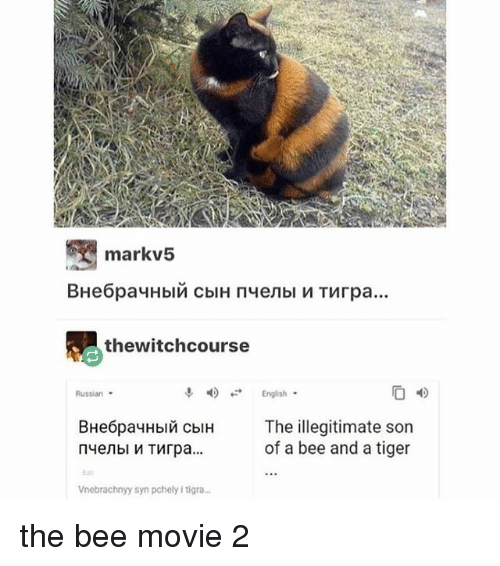 Bee Movie, Memes, and Movie: markv5  thewitchcourse  English  Russian  BHe6pay  Hbi cblH The illegitimate son  of a bee and a tiger  tsと  Vnebrachnyy syn pchely i tigra the bee movie 2