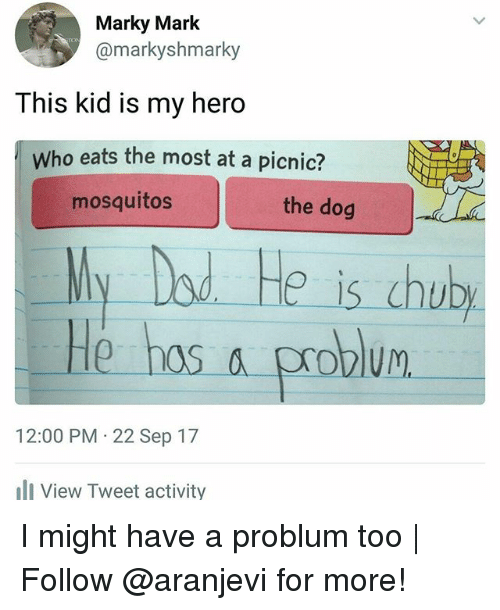 Memes, My Hero, and 🤖: Marky Mark  @markyshmarky  This kid is my hero  Who eats the most at a picnic?  mosquitos  the dog  Ny Dod He is chub  He hos a problum  12:00 PM 22 Sep 17  View Tweet activity I might have a problum too   Follow @aranjevi for more!