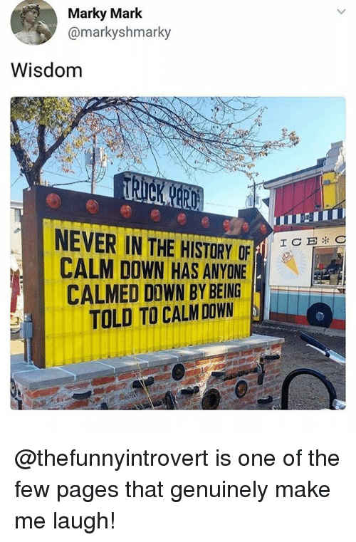 Funny, Meme, and History: Marky Mark  @markyshmarky  Wisdom  NEVER IN THE HISTORY OF  CALM DOWN HAS ANYONE  CALMED D0WN BY BEING  TOLD TO CALM DOWN  ICEC @thefunnyintrovert is one of the few pages that genuinely make me laugh!