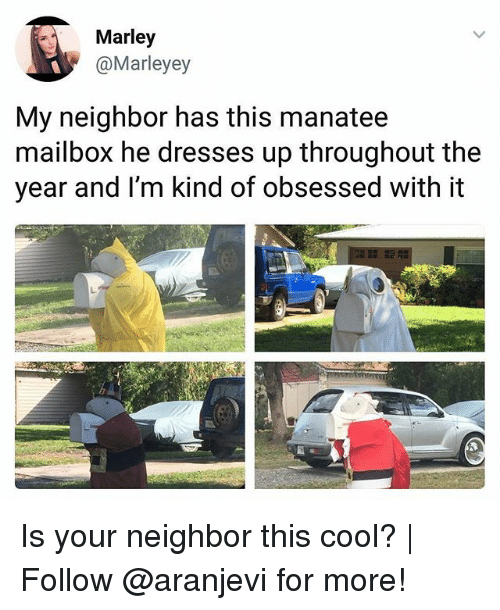 Memes, Cool, and Dresses: Marley  @Marleyey  My neighbor has this manatee  mailbox he dresses up throughout the  year and I'm kind of obsessed with it Is your neighbor this cool? | Follow @aranjevi for more!