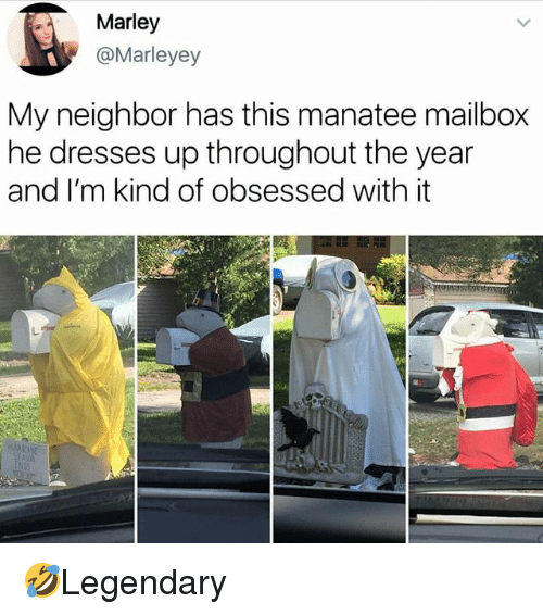 Memes, Dresses, and 🤖: Marley  @Marleyey  My neighbor has this manatee mailbox  he dresses up throughout the year  and I'm kind of obsessed with it 🤣Legendary