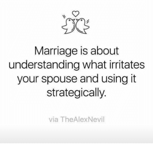 Marriage, Memes, and Understanding: Marriage is about  understanding what irritates  your spouse and using it  strategically.  via TheAlexNevil