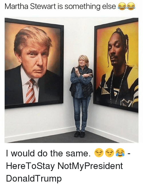 Memes, Martha Stewart, and Something Else: Martha Stewart is something else I would do the same. 😏😏😂 - HereToStay NotMyPresident DonaldTrump
