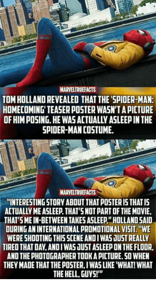 Memes Spider And SpiderMan MARVELTRUEFACTS TOM HOLLAND REVEALED THAT THESPIDER