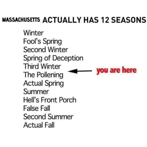 Fall, Memes, and Winter: MASSACHUSETTS ACTUALLY HAS 12 SEASONS  Winter  Fool's Spring  Second Winter  Spring of Deception  Third Winter  The Polleningyou are here  Actual Spring  Summer  Hell's Front Porch  False Fall  Second Summer  Actual Fall