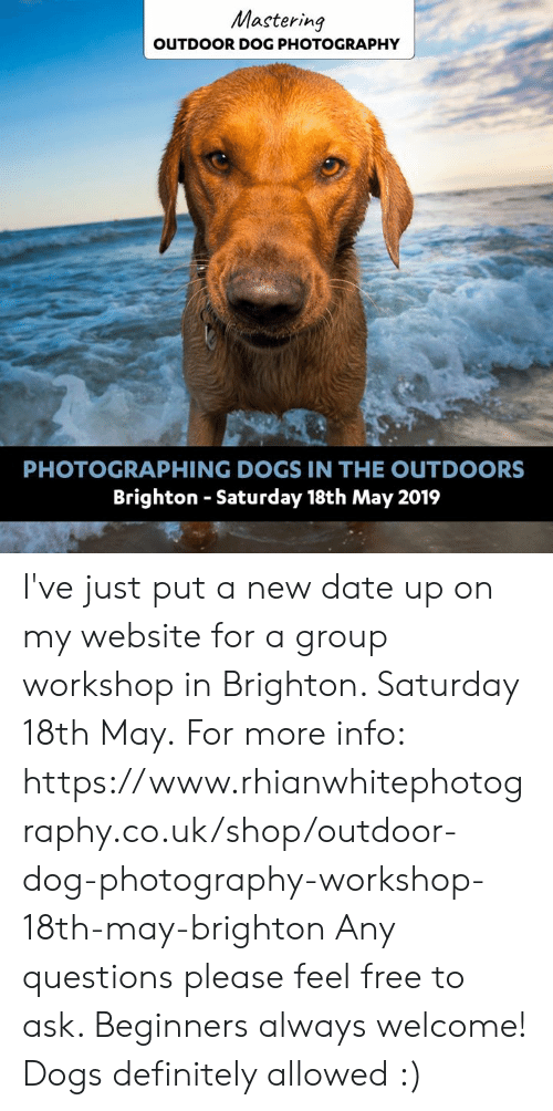 Definitely, Dogs, and Memes: Mastering  OUTDOOR DOG PHOTOGRAPHY  PHOTOGRAPHING DOGS IN THE OUTDOORS  Brighton - Saturday 18th May 2019 I've just put a new date up on my website for a group workshop in Brighton. Saturday 18th May.  For more info: https://www.rhianwhitephotography.co.uk/shop/outdoor-dog-photography-workshop-18th-may-brighton  Any questions please feel free to ask.   Beginners always welcome! Dogs definitely allowed :)