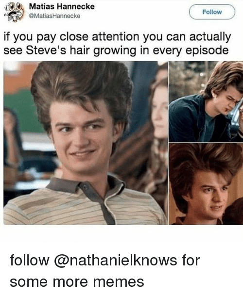 Memes, Some More, and Hair: Matias Hannecke  Follow  MatiasHannecke  if you pay close attention you can actually  see Steve's hair growing in every episode follow @nathanielknows for some more memes