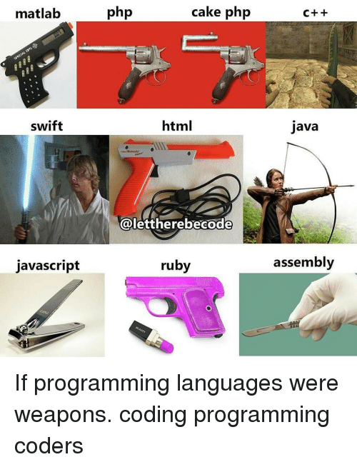 25  Best Memes About If Programming Languages Were