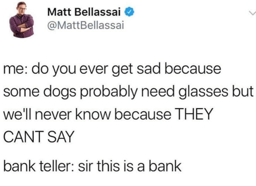 Dogs, Bank, and Glasses: Matt Bellassai  @MattBellassai  me: do you ever get sad because  some dogs probably need glasses but  well e THEY  CANT SAY  bank teller: sir this is a bank  never know becaus