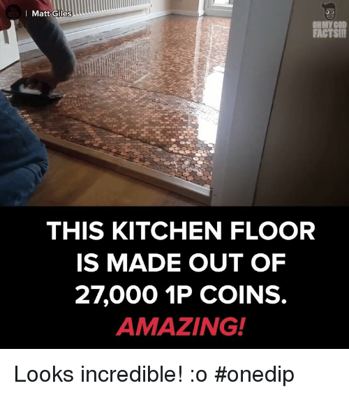 Memes, 🤖, and Incredibles: Matt Giles  FACTS!!!  THIS KITCHEN FLOOR  IS MADE OUT OF  27000 1P COINS.  AMAZING! Looks incredible! :o #onedip